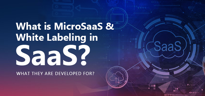 Know What Is MicroSaaS And White Labeling In SaaS? What they are developed for?